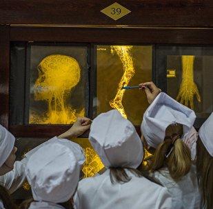Студенты на занятиях на кафедре анатомии, архивное фото