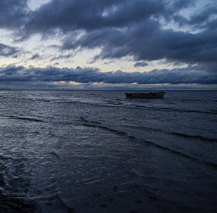 На побережье Балтийского моря