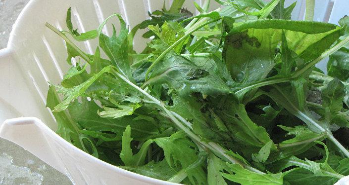 Salātu lapas