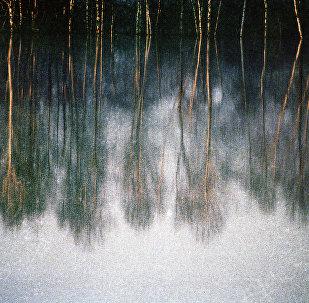 Отражение. Архивное фото