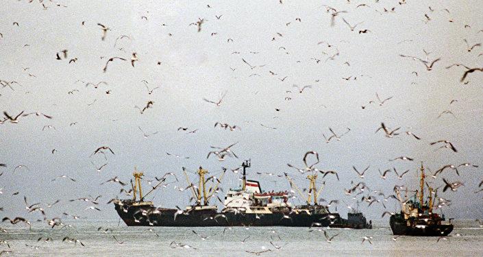 Рыболовецкие судна в море. Архивное фото