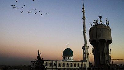Damaska