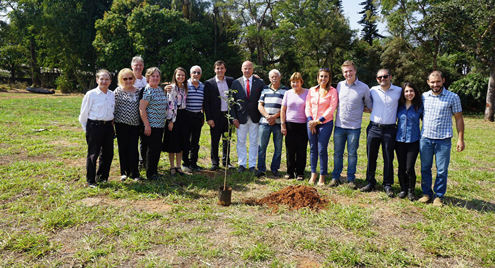 Раймондс Бергманис посадил дерево в Бразилии