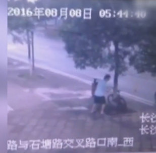 Ķīnietis nozāģējis koku, lai nozagtu velosipēdu
