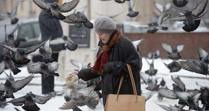 Женщина кормит голубей. Архивное фото