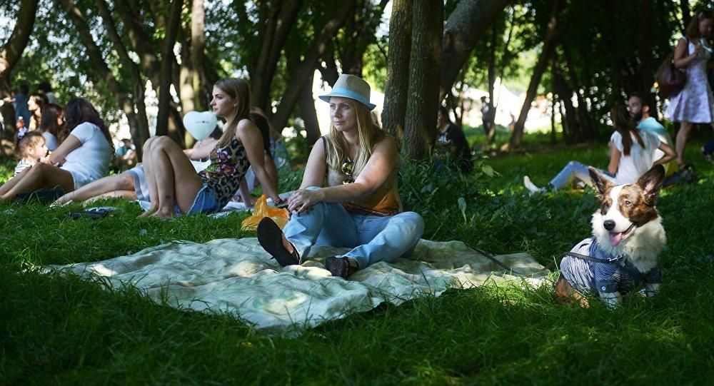 Пикник в парке. Архивное фото