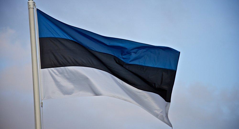 Эстонский флаг. Иллюстративное фото.
