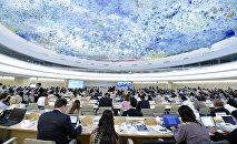 Cilvēktiesību padomes. Foto no arhīva