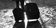 С чемоданами
