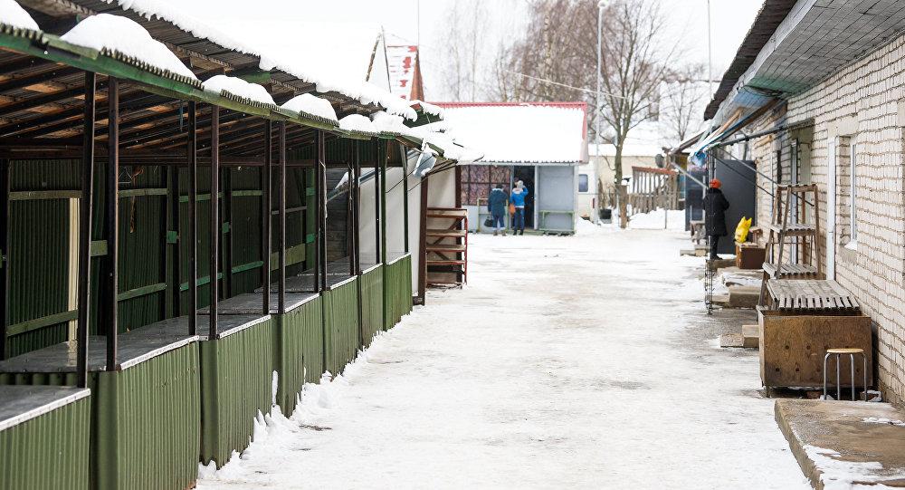 Latvijas iedzīvotāju skaits joprojām katastrofiski sarūk