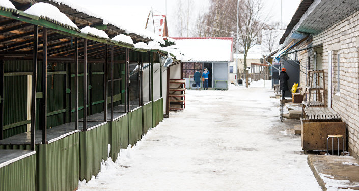 Пустой рынок в Лудзе
