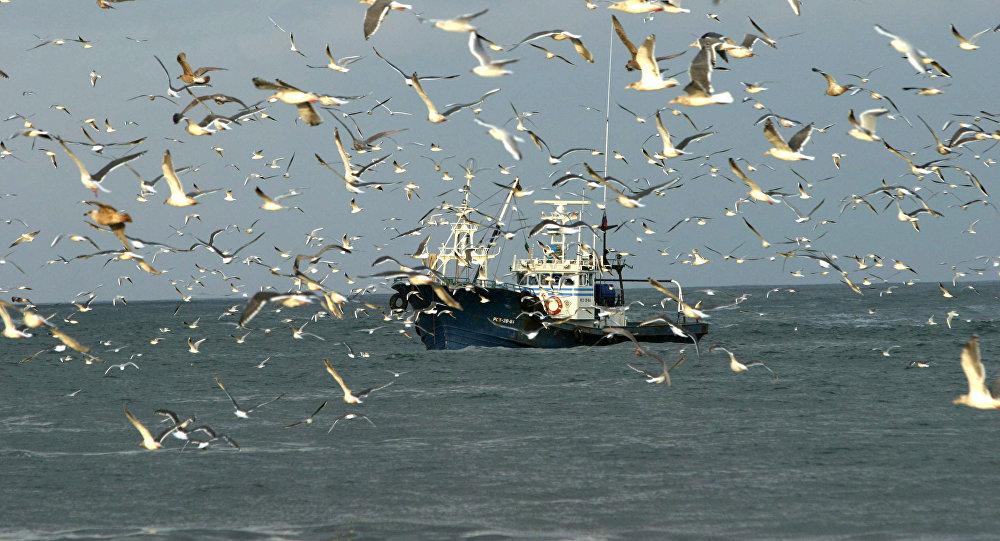 Рыболовецкий сейнер