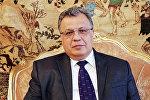 Российский посол в Турции Андрей Карлов, архивное фото