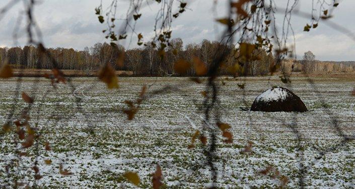 Мокрый снег.