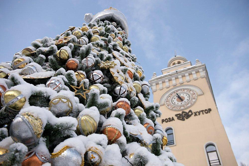Новогоднее убранство в Сочи