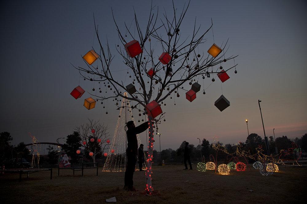 Izrotāts koks Ravalpindivas pilsētā Pakistānā