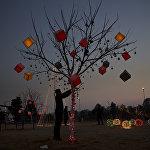 Украшенное дерево в городе Равалпиндив Пакистане