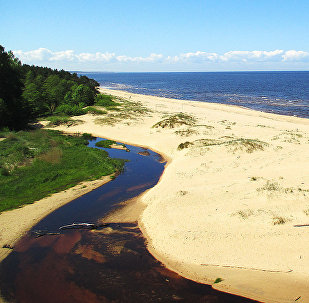 Jūras krasts Saulkrastos