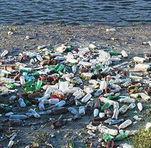 Пластиковые бутылки и другой мусор плавает в воде