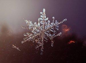 Макросъемка снежинки