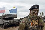 Командир польского танка на учениях с НАТО