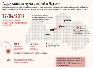 Африканская чума свиней в Латвии