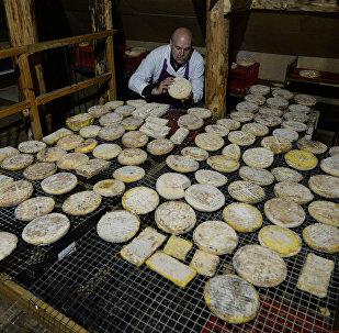 Производство французских сыров в Липецкой области, архивное фото