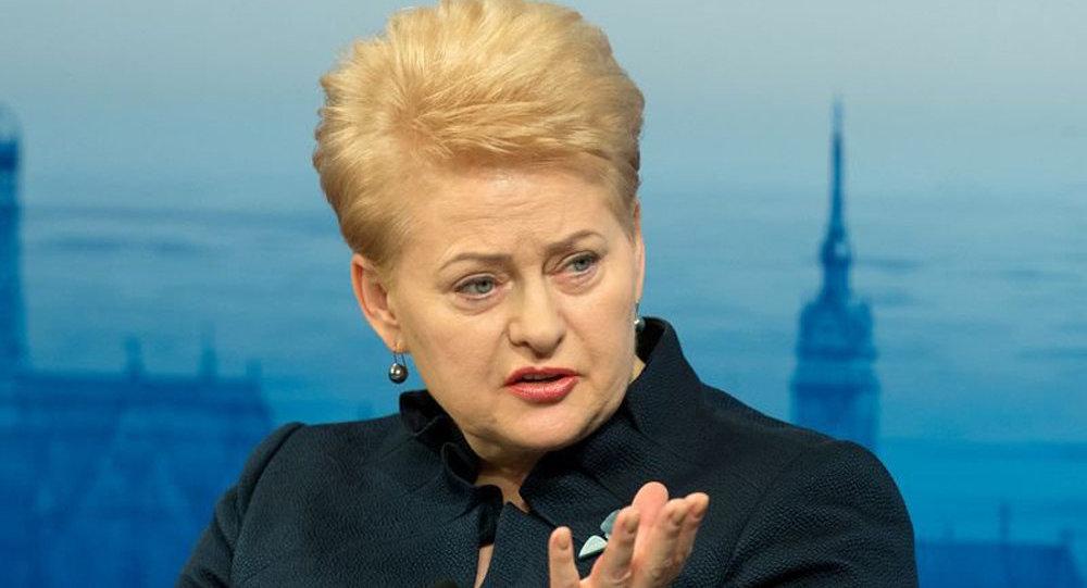 Президент Литвы Даля Грибаускайте на Мюнхенской конференции по безопасности