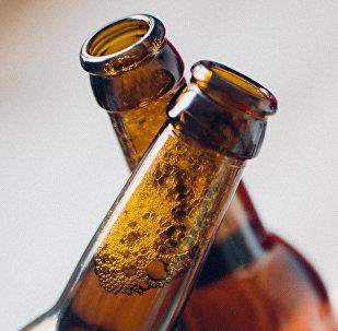 Alus pudeles