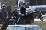 Новый глава МВД США Райан Зинке прибыл на службу верхом на коне и в ковбойской шляпе