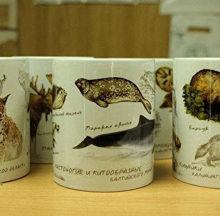 Эксклюзивная сувенирная серия просветительских кружек Калининградского зоопарка