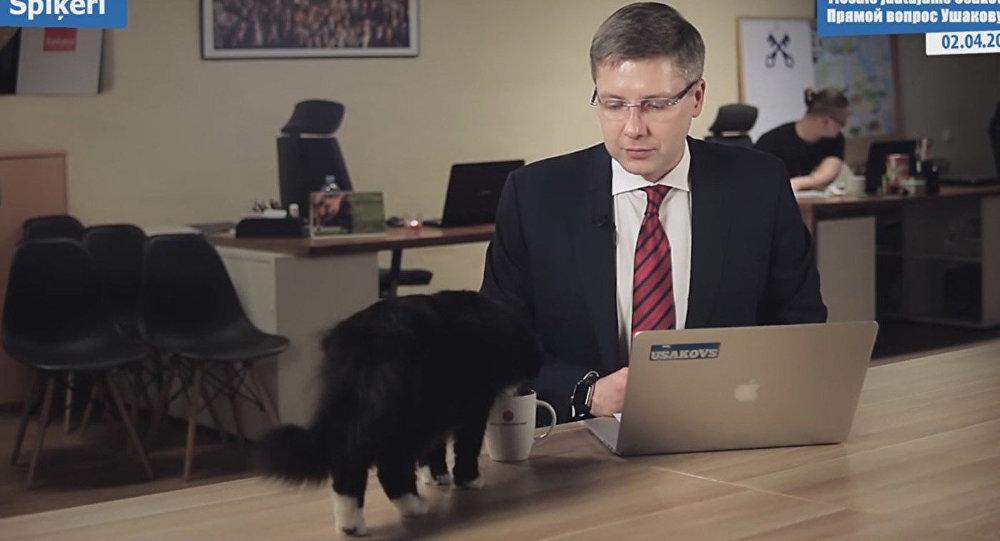 В прямом эфире кот попил из кружки Нила Ушакова