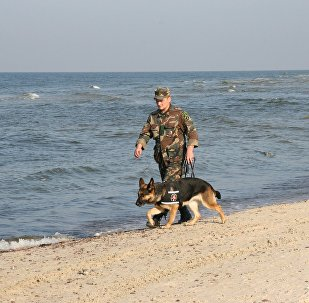 Robežsargs ar dienesta suni