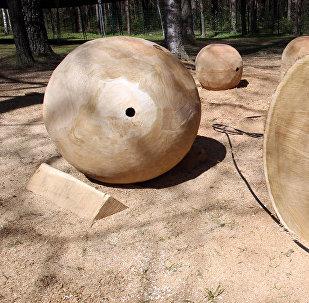 Международный фестиваль деревянных скульптур в Межапарке