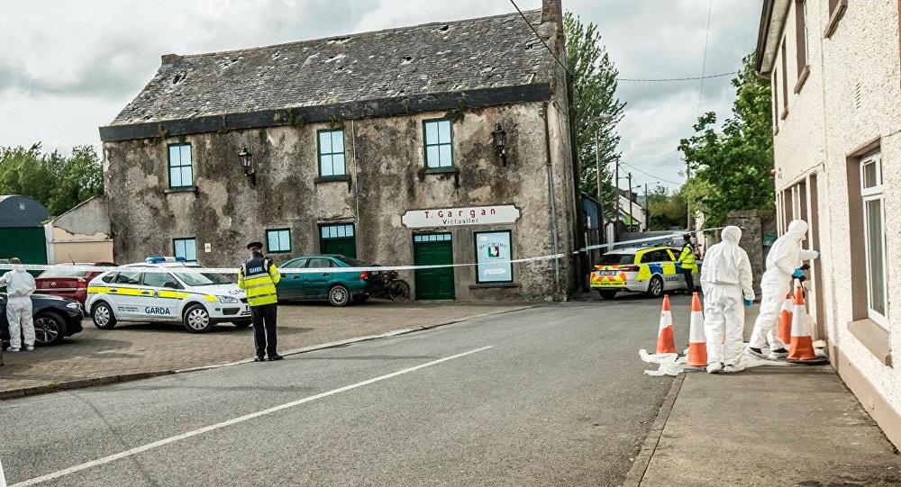 Полиция и судебные эксперты на месте смерти латвийки Риты Апине в графстве Килкенни на юго-востоке Ирландии