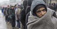 Bēgļi Belgradā. Alehandro Martiness Veless, Spānija.