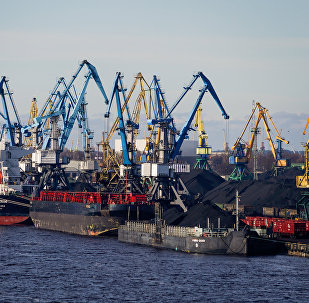 Ogles pārkraušana Rīgas ostā