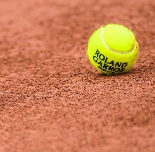 Теннисный мяч на Roland Garros