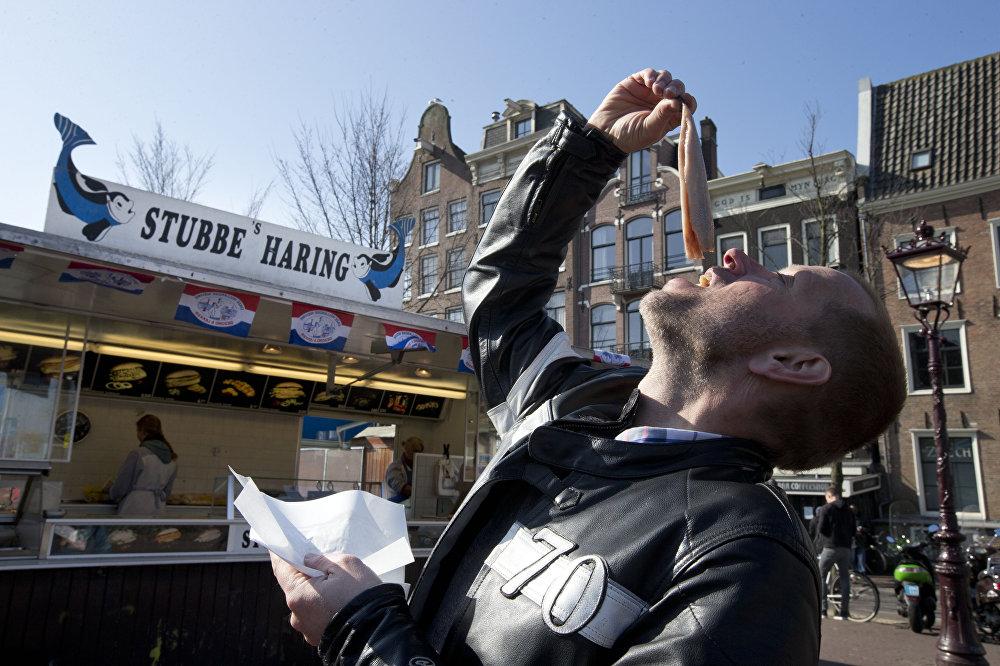 Поедание селедки на День селедки в Голландии