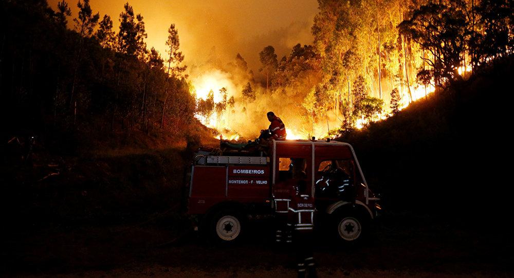 43 человека стали жертвами пожаров вПортугалии