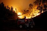 Пожарные тушат лесной пожар возле Буки в центральной Португалии