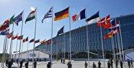 Флаги стран членов НАТО