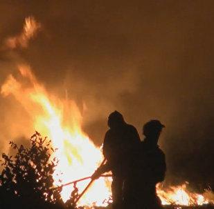 Meža ugunsgrēkos Portugālē cietuši vairāki desmiti cilvēku