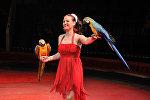 Рижский цирк Фантазия