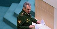 Министр обороны РФ Сергей Шойгу на заседании Совета Федерации РФ