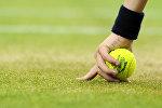 Теннис. Уимблдон - 2012. Четырнадцатый день
