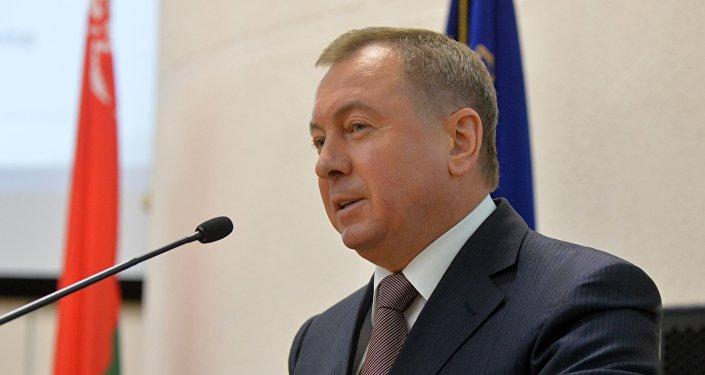 Владимир Макей на семинаре МИДа
