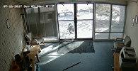 Ietiepīgs āzis ielauzās amerikāņu kompānijas ofisā