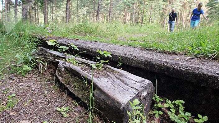 Все, что осталось от гордости Межапарка -- фрагменты станционных фундаментов среди лесных дебрей