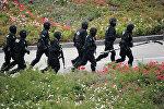 Бойцы спецподразделения СБУ Альфа, архивное фото